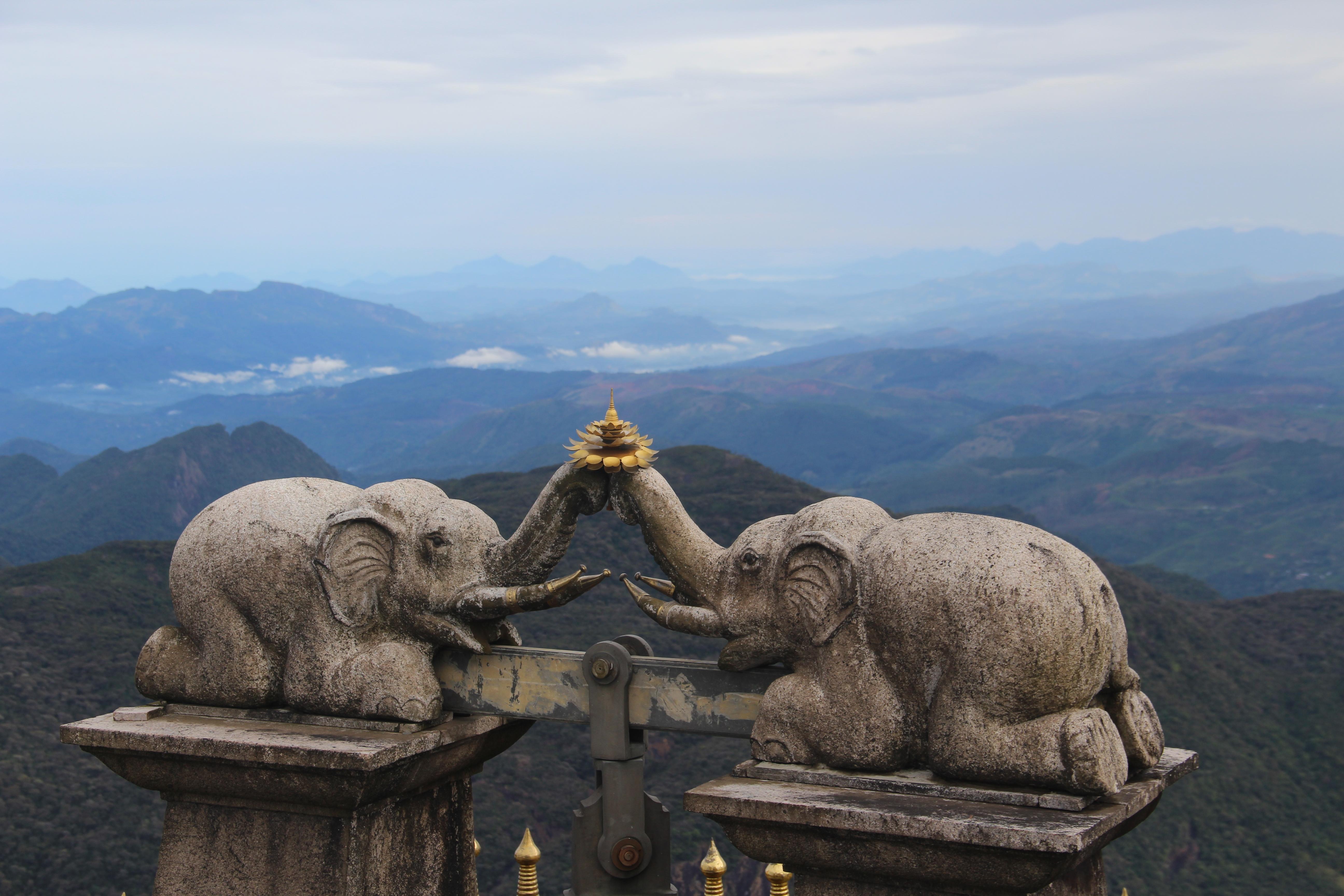 Les éléphants d'Adam's peak