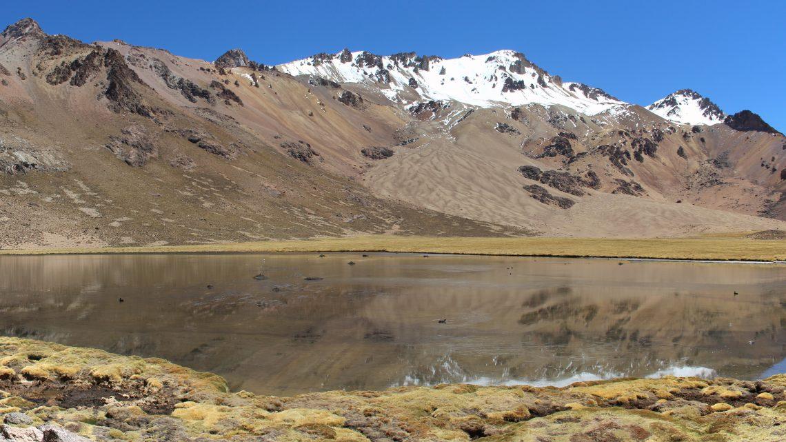 Viscachas et Curahuara
