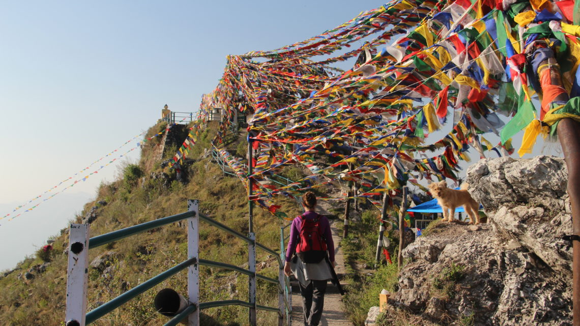Mussoorie, Landour, flycatcher and mantras